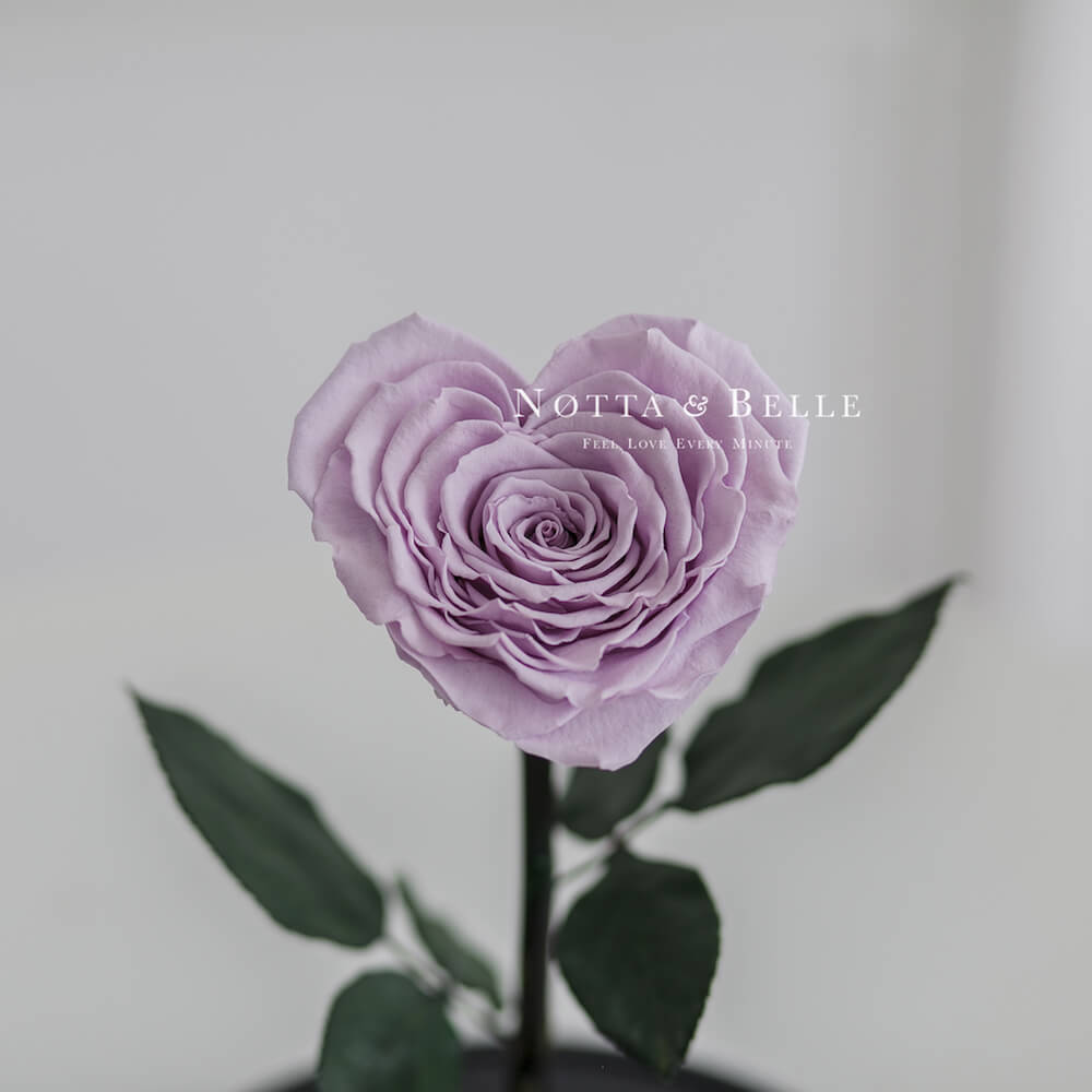 Лавандовая роза Premium X в форме сердца