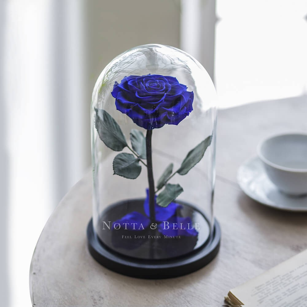forever blue rose in glass dome - premium