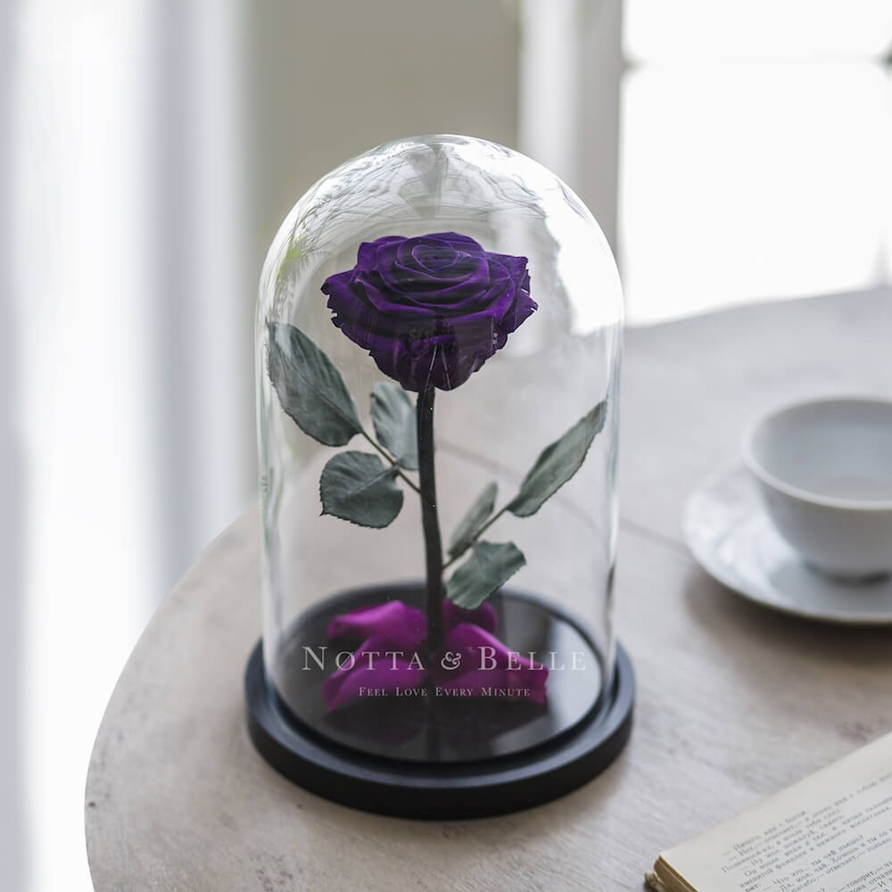 forever purple rose in glass dome - premium