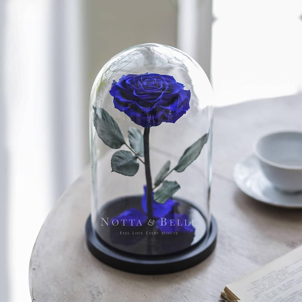 Синяя роза в колбе - Premium