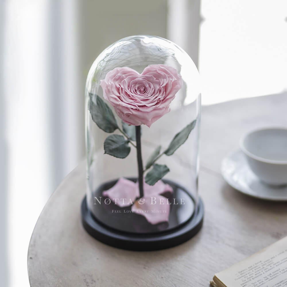 Нежно-Розовая роза Premium в форме сердца