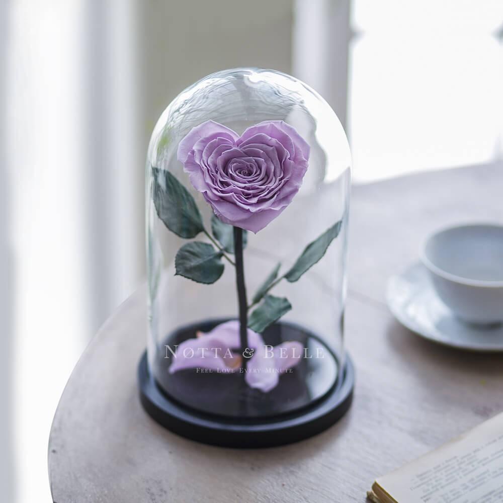Лавандовая роза в колбе в форме сердца - Premium