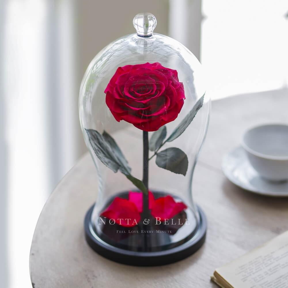 Роза цвета фуксии в фигурной колбе - Premium X