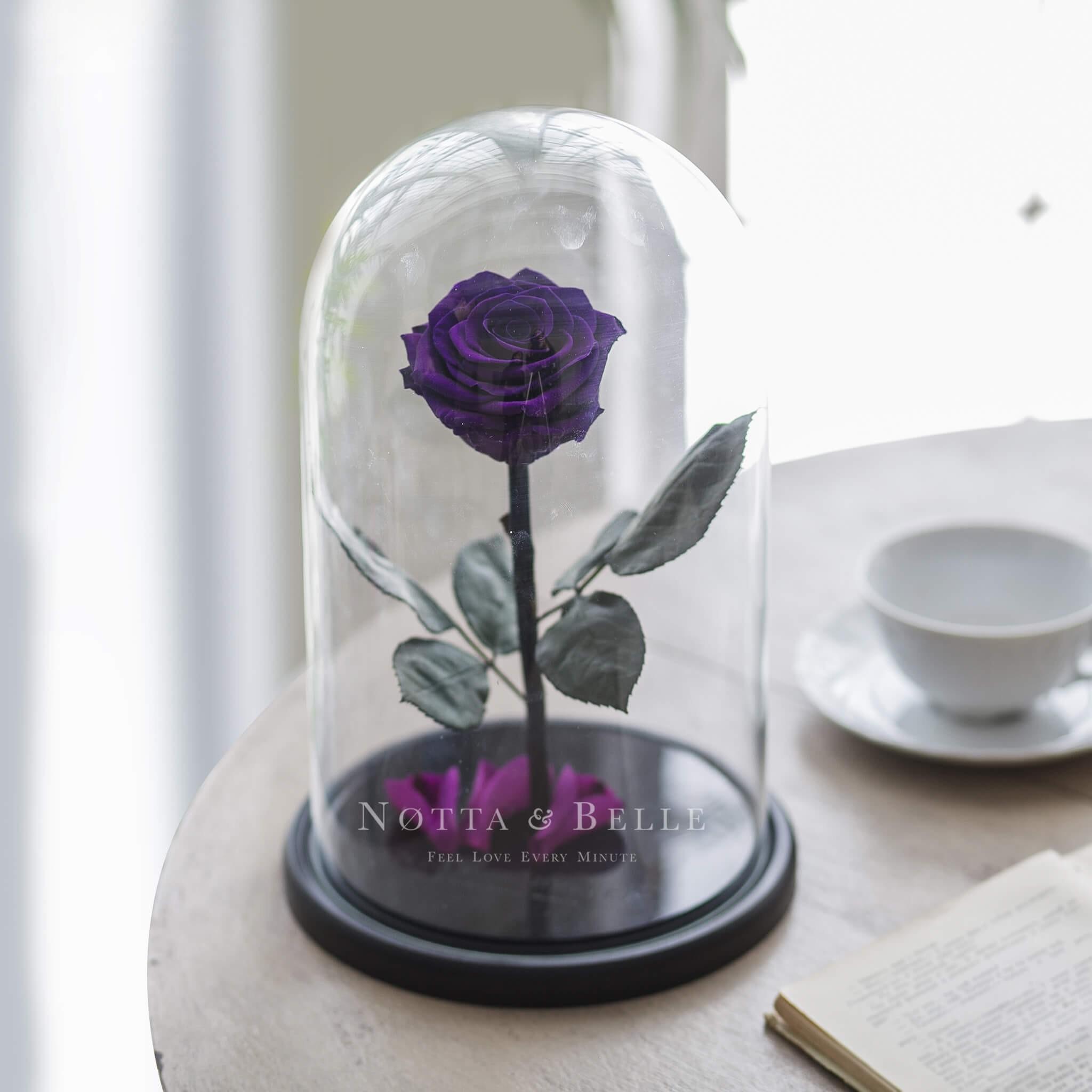 Фиолетовая роза в колбе - King