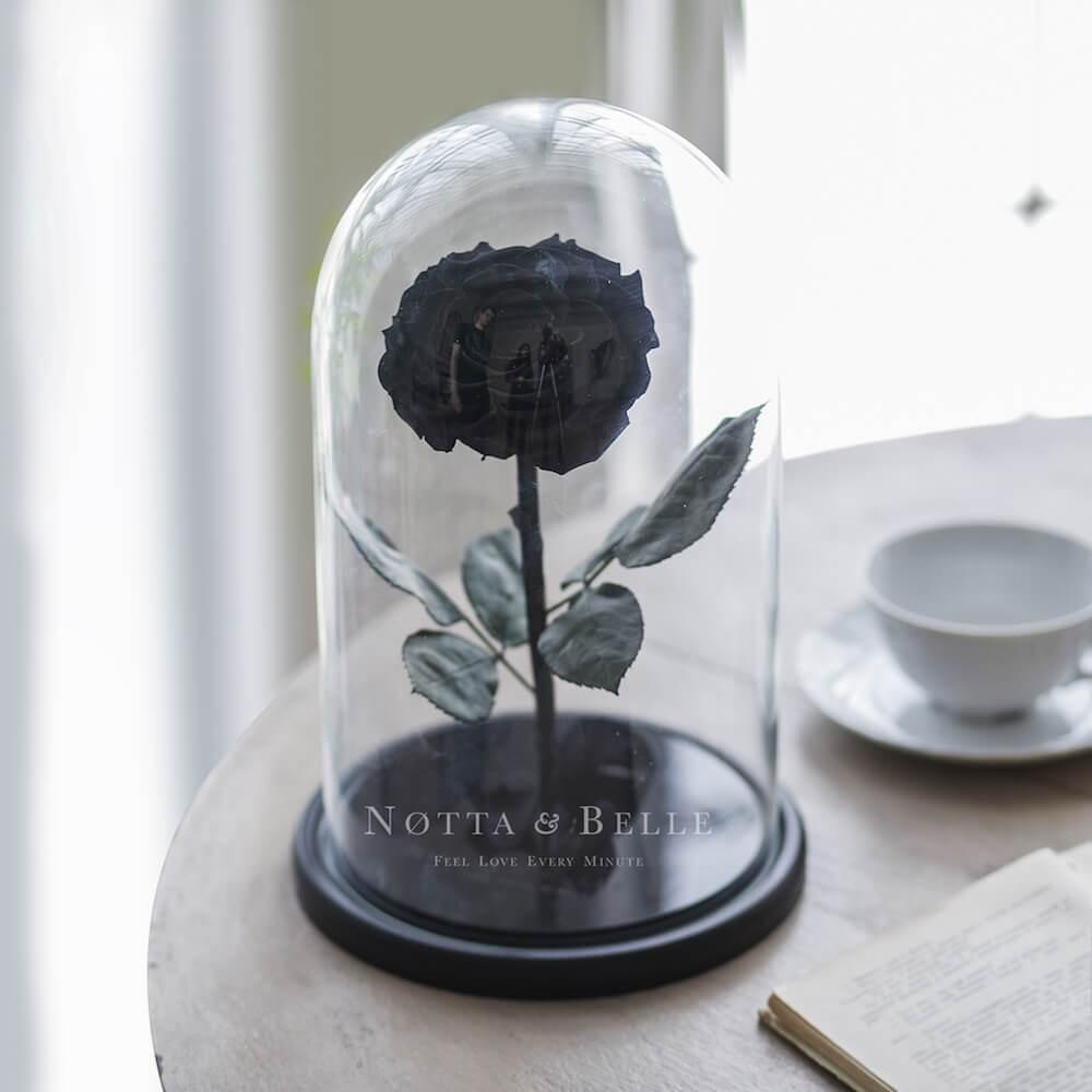 Черная роза в колбе - King