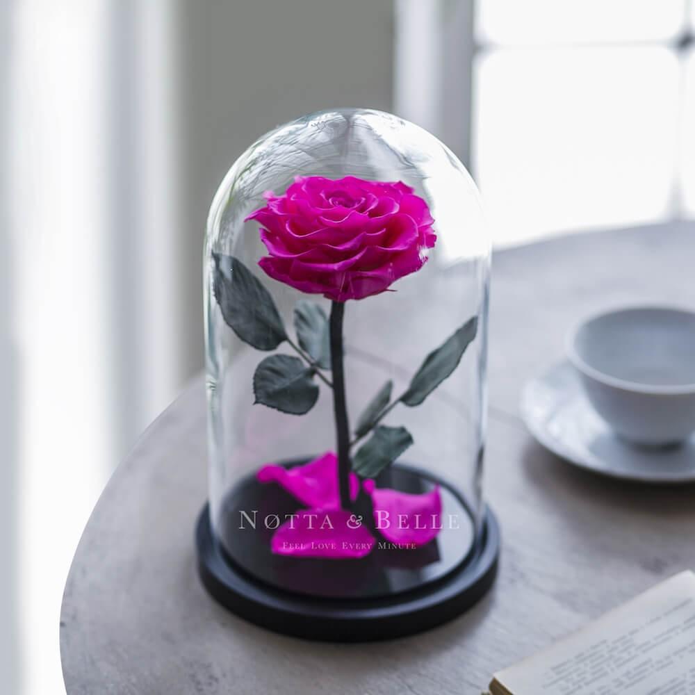 Ярко-Розовая роза в колбе Premium
