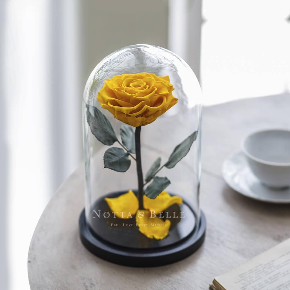 Желтая роза в колбе - Premium