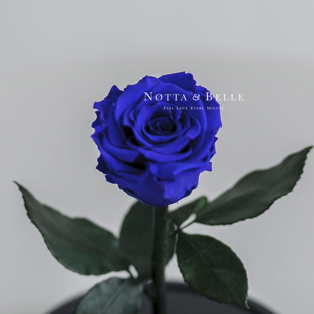 Бутон синей розы в колбе - Mini