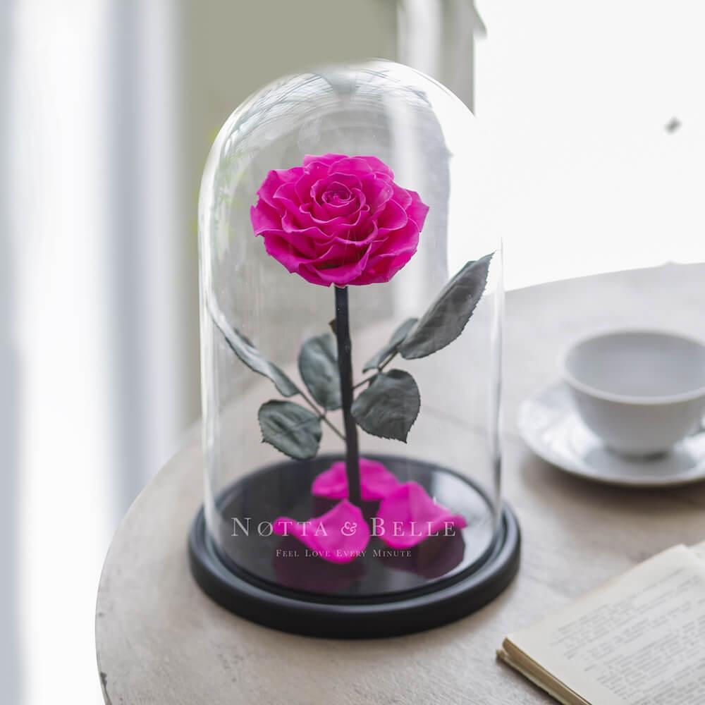 Ярко Розовая роза в колбе - King