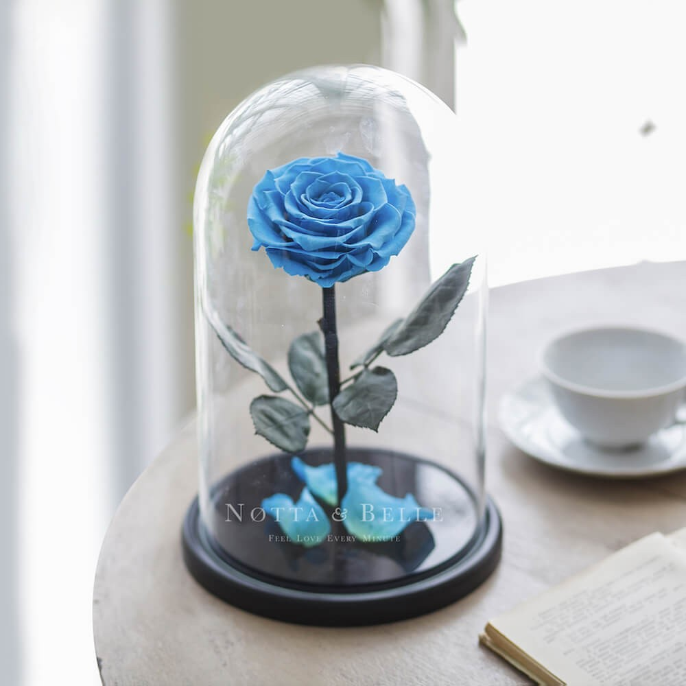 Голубая роза в колбе King