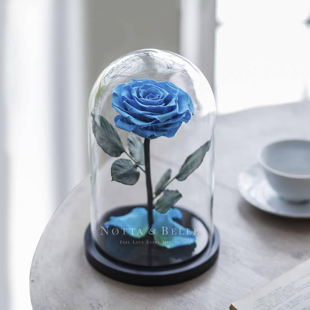 Голубая роза в колбе Premium
