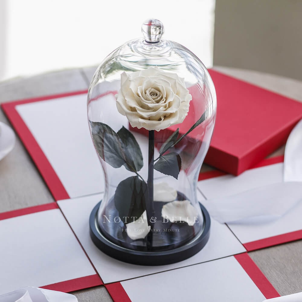Boîte cadeau Rouge pour Rose sous cloche