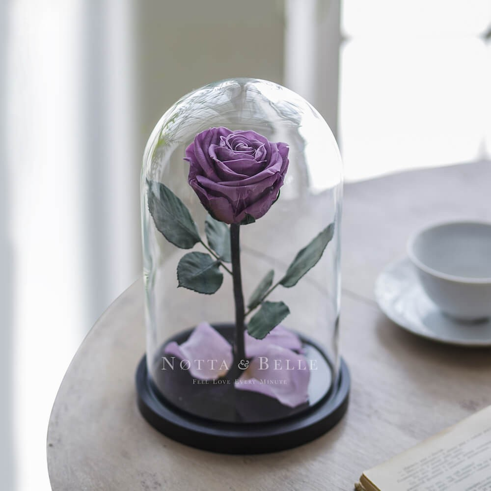 forever lavender rose in glass dome - premium