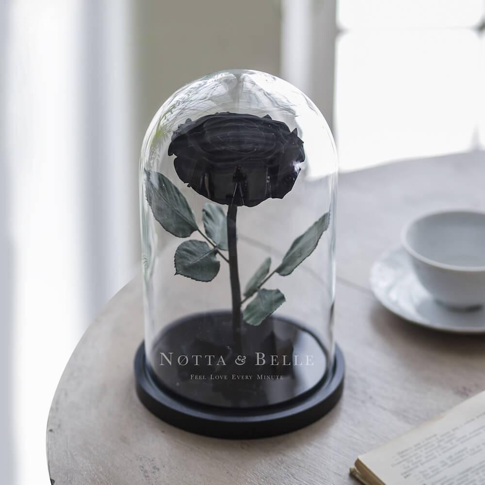 Premium černá Růže ve skle