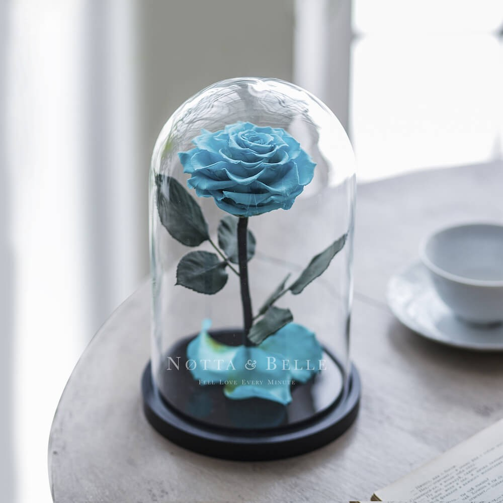 forever turquoise rose in glass dome - premium