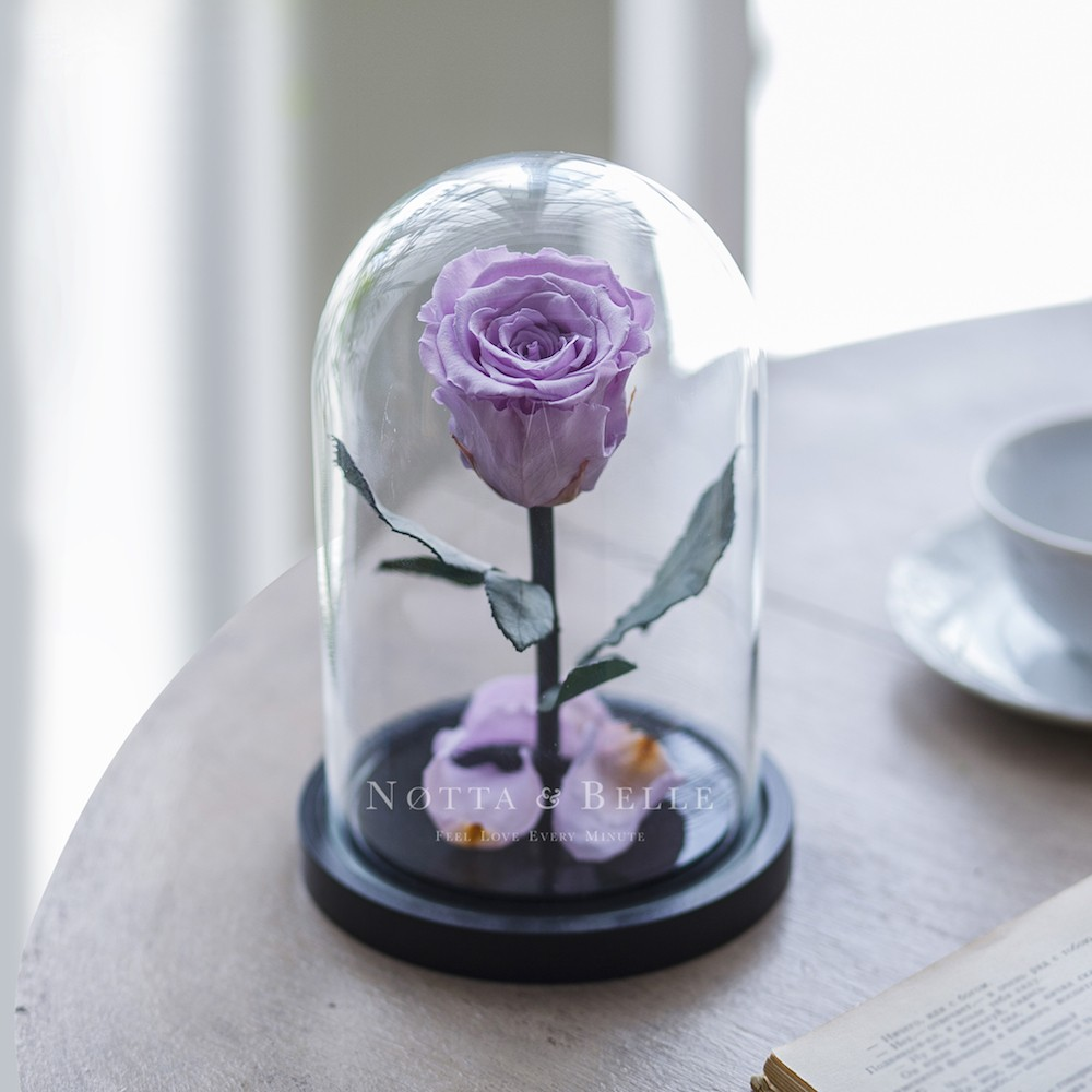 forever lavender rose in glass dome - mini