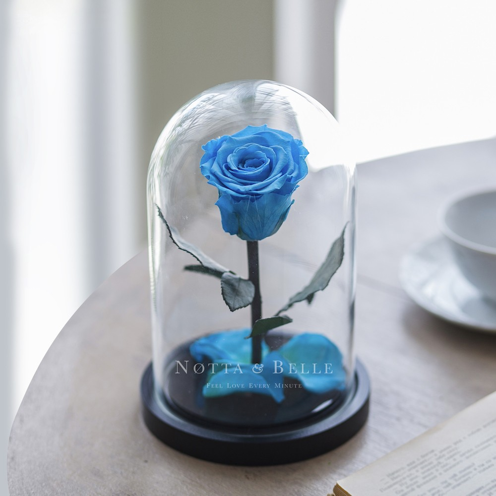 forever light blue rose in glass dome - mini