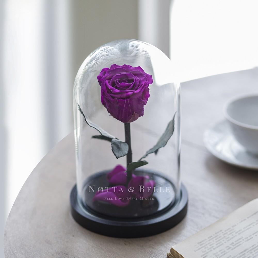 forever purple rose in glass dome - mini