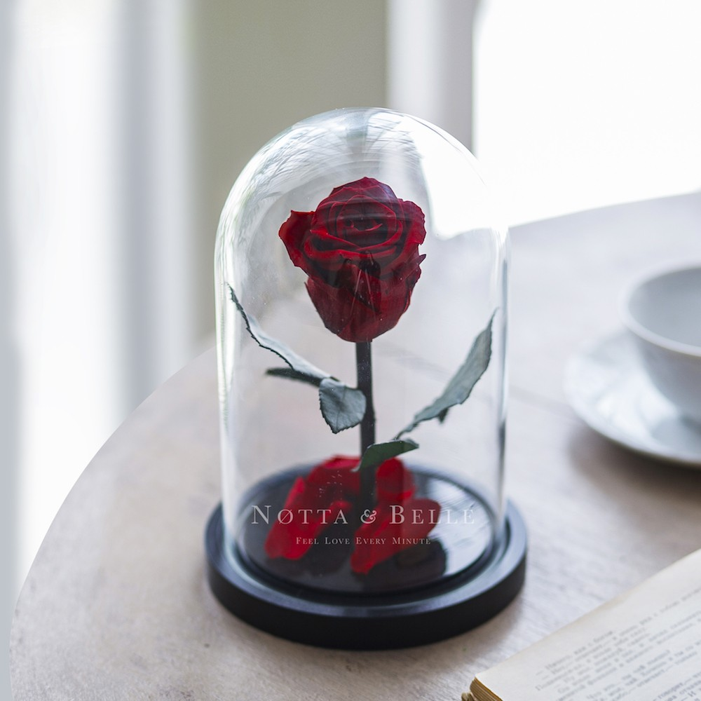 forever burgundy rose in glass dome - mini