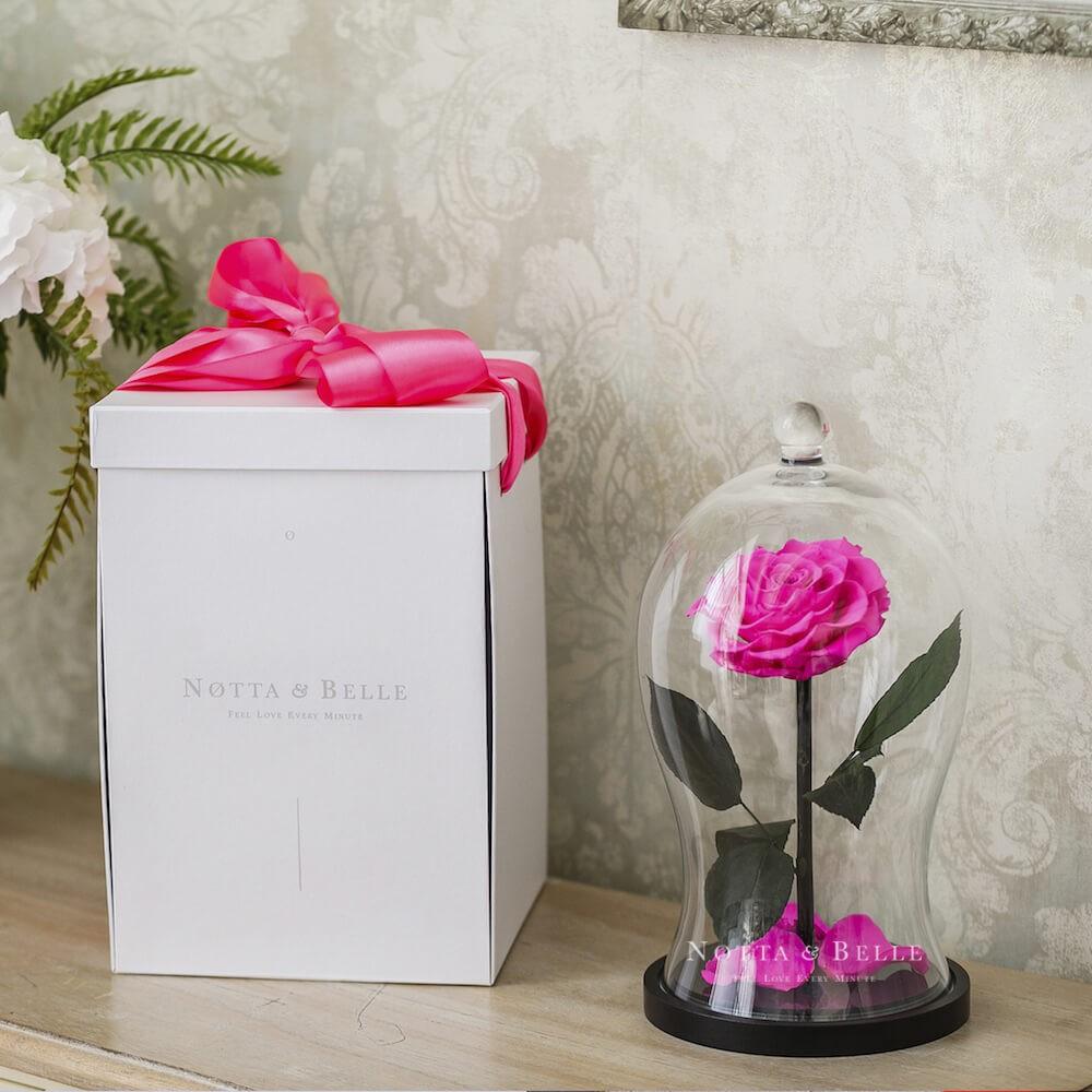 Boîte cadeau X Blanches pour Rose sous cloche