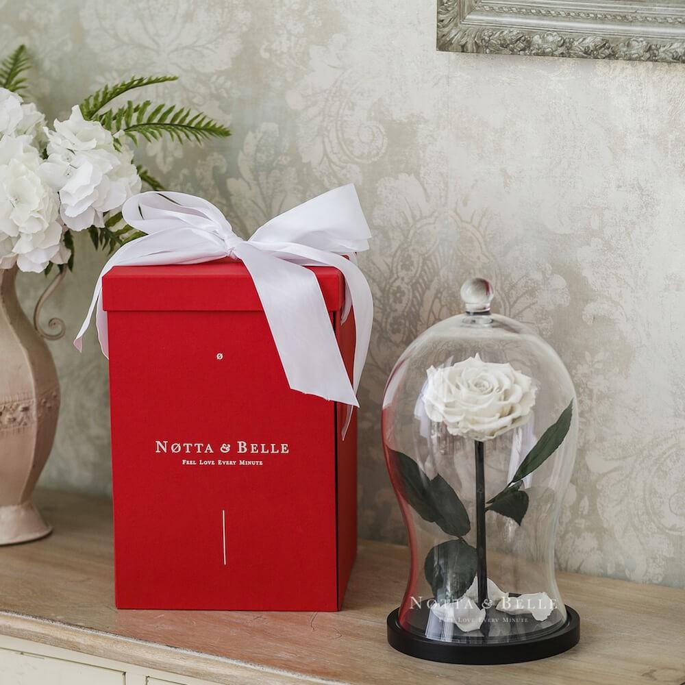 Geschenkbox X Rote  für eine Rose im Glas