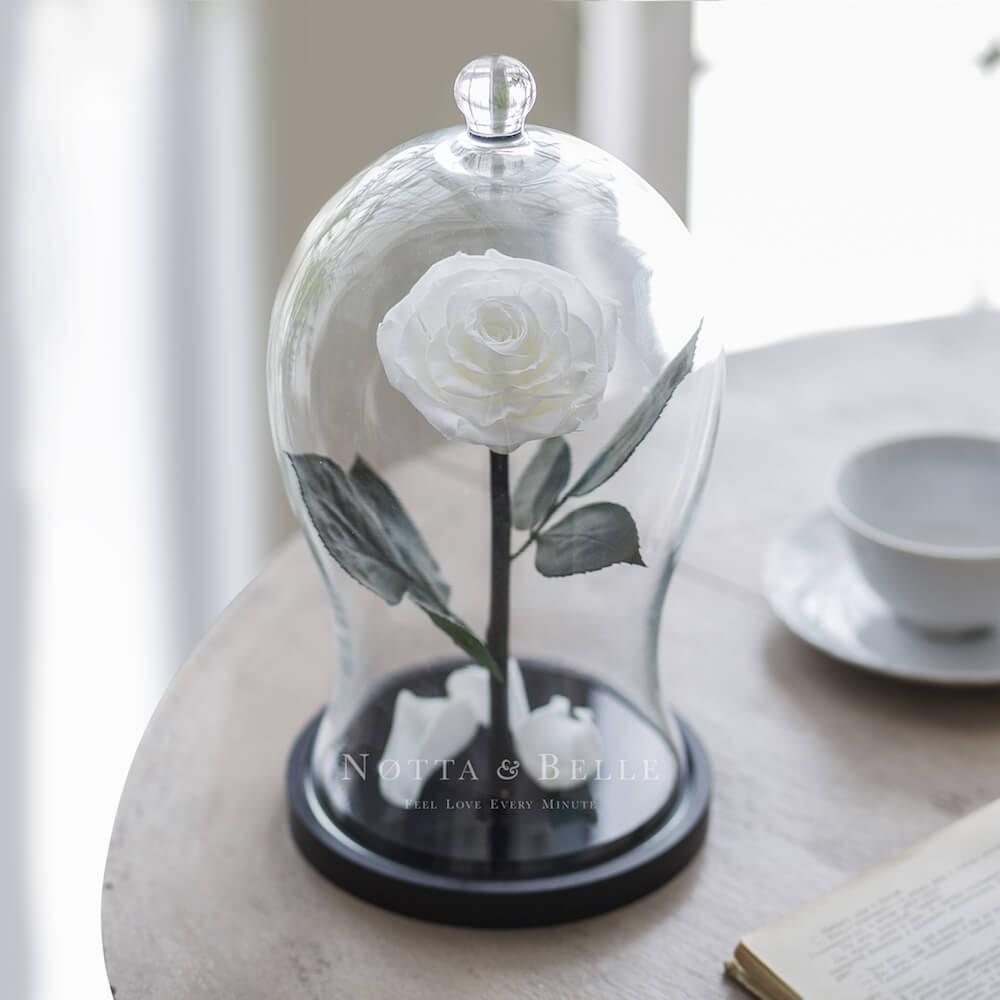 Белая роза в фигурной колбе - Premium X