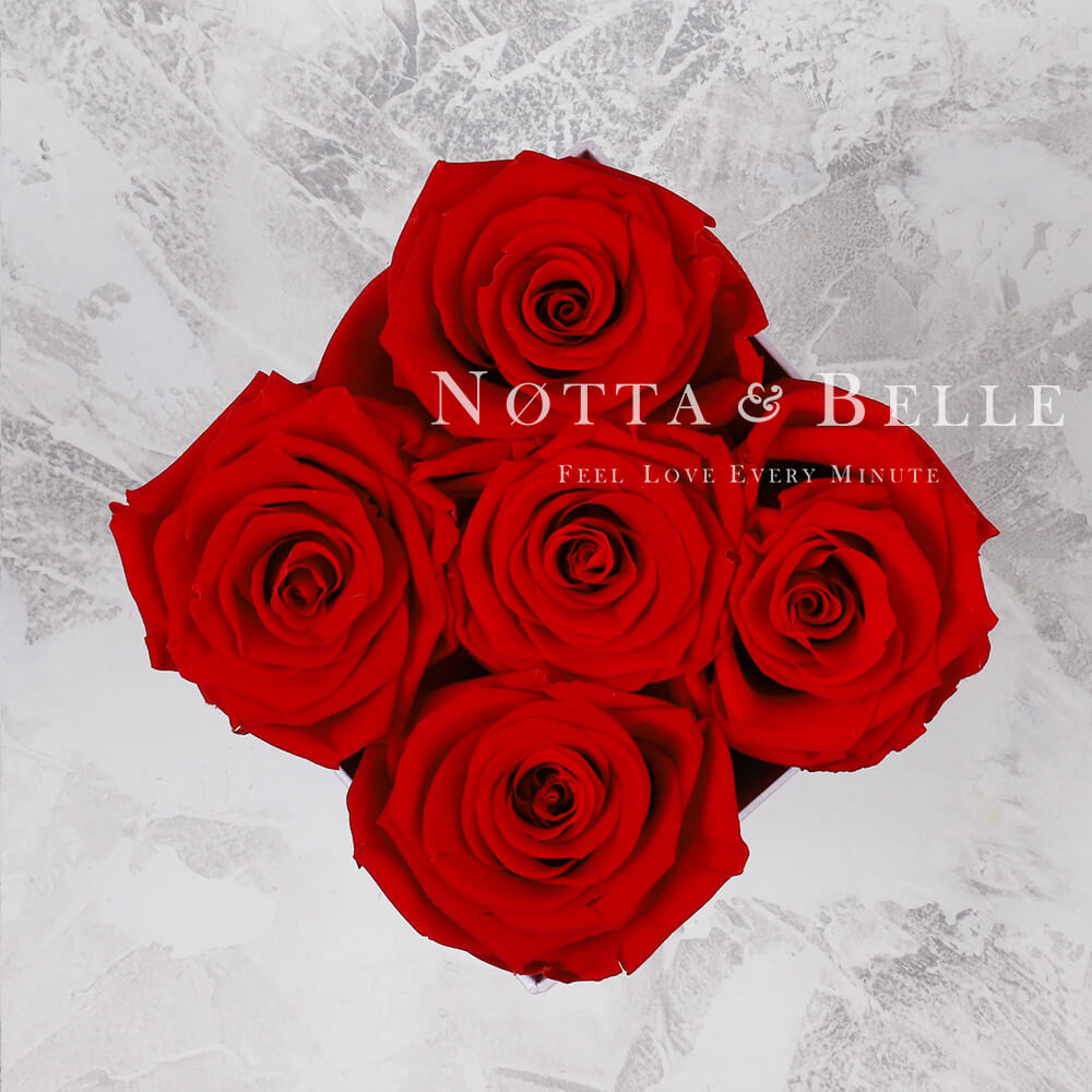 Долговечный букет из 5 красных роз - № 015