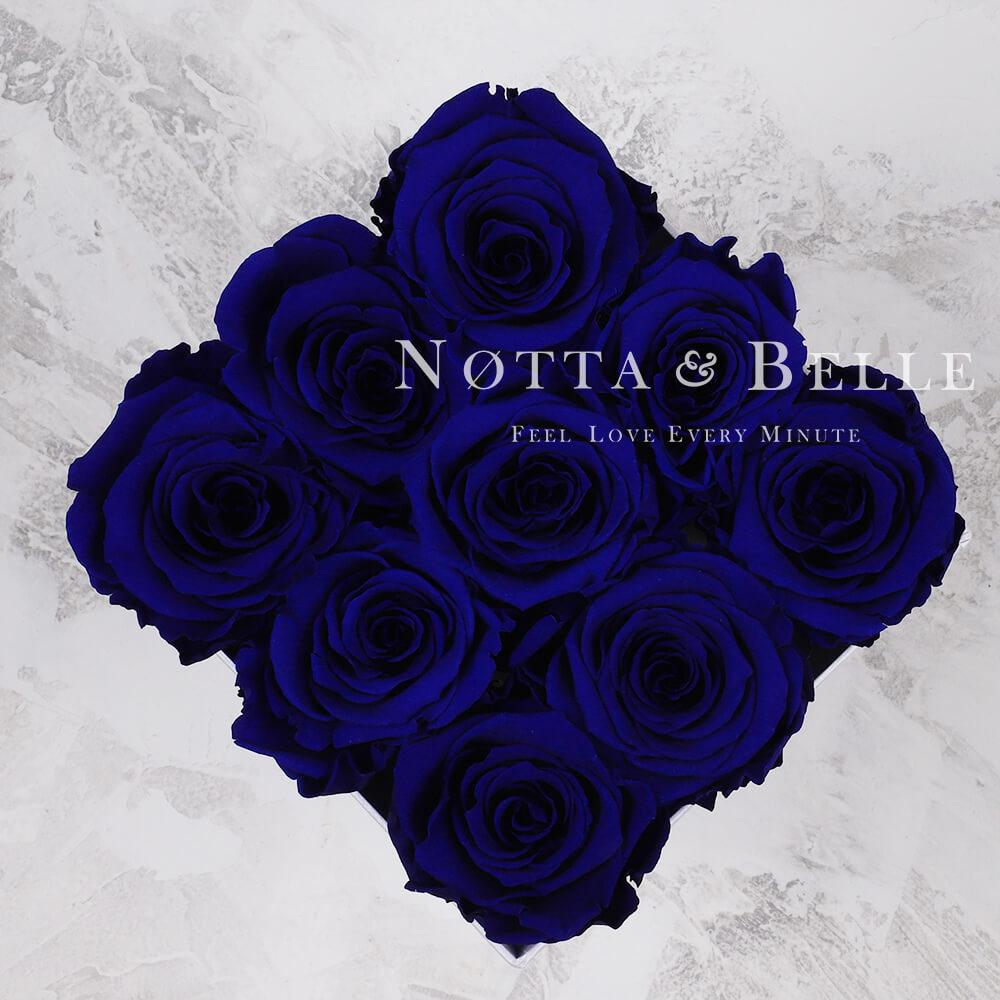 Modrá kytice «Romantic» v černé krabičce - 9 ks