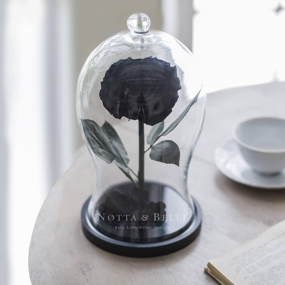 Premium X černá Růže ve skle