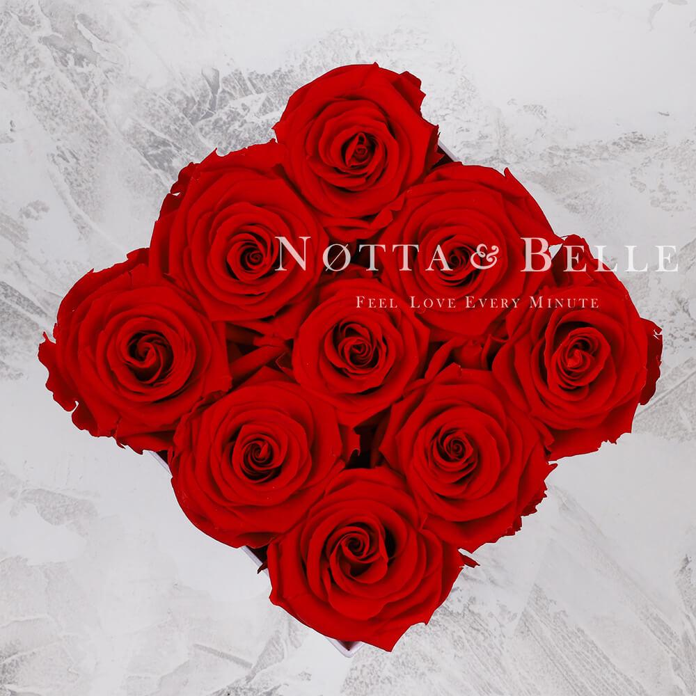 Ramo rojo «Romantic» en una caja negra - 9 piezas