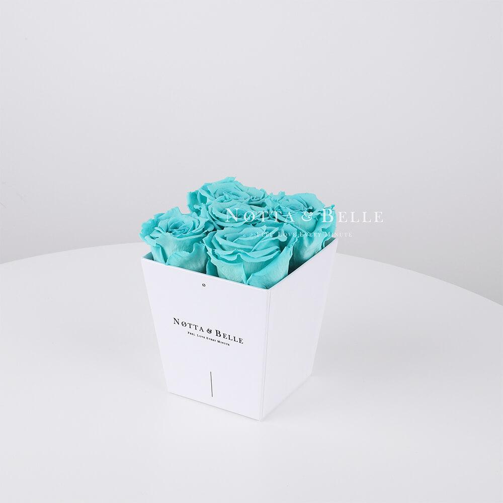Долговечный букет из 5 бирюзовых роз - № 041