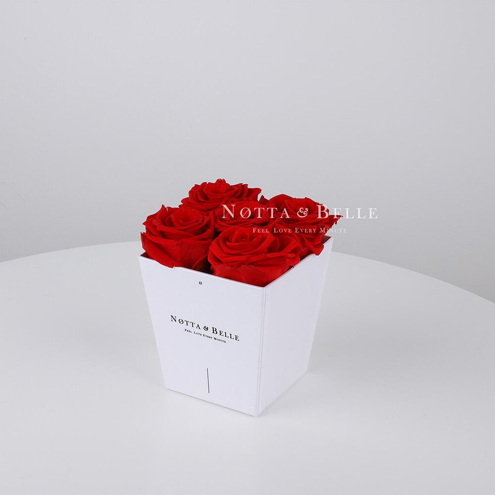 Mazzo colore rosso «Forever» in una scatola bianca - 5 pz.