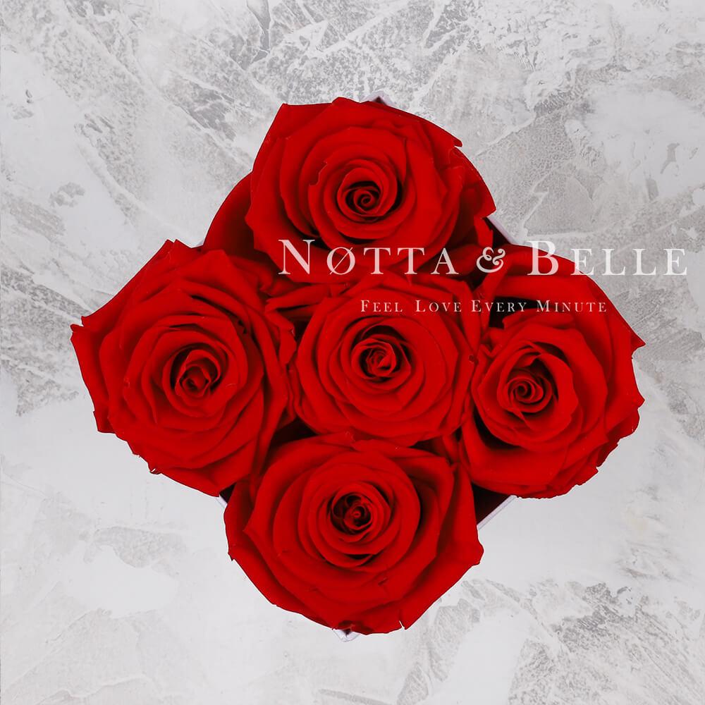 «Forever» aus 5 roten Rosen