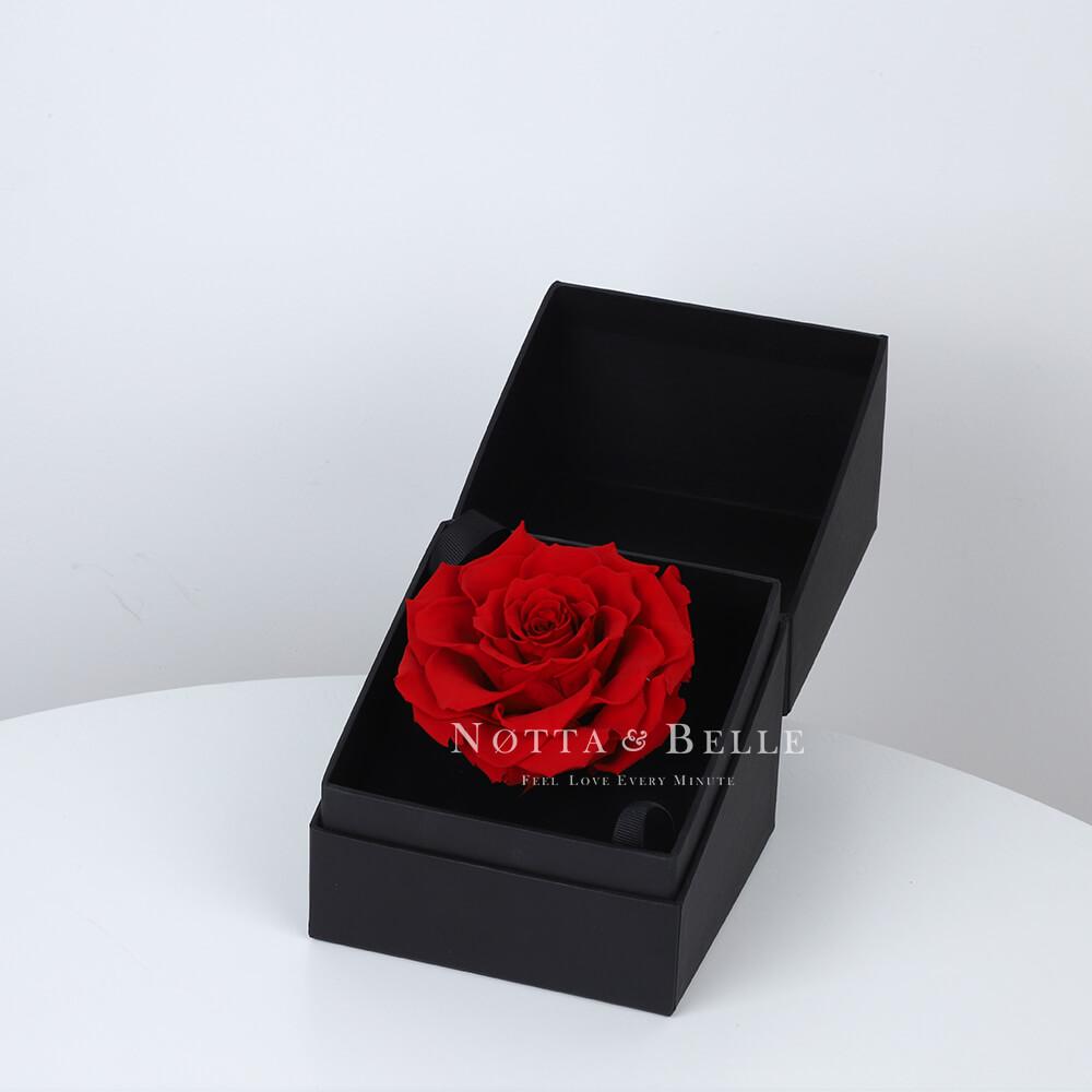 Rose rouge dans une boîte noire Premium