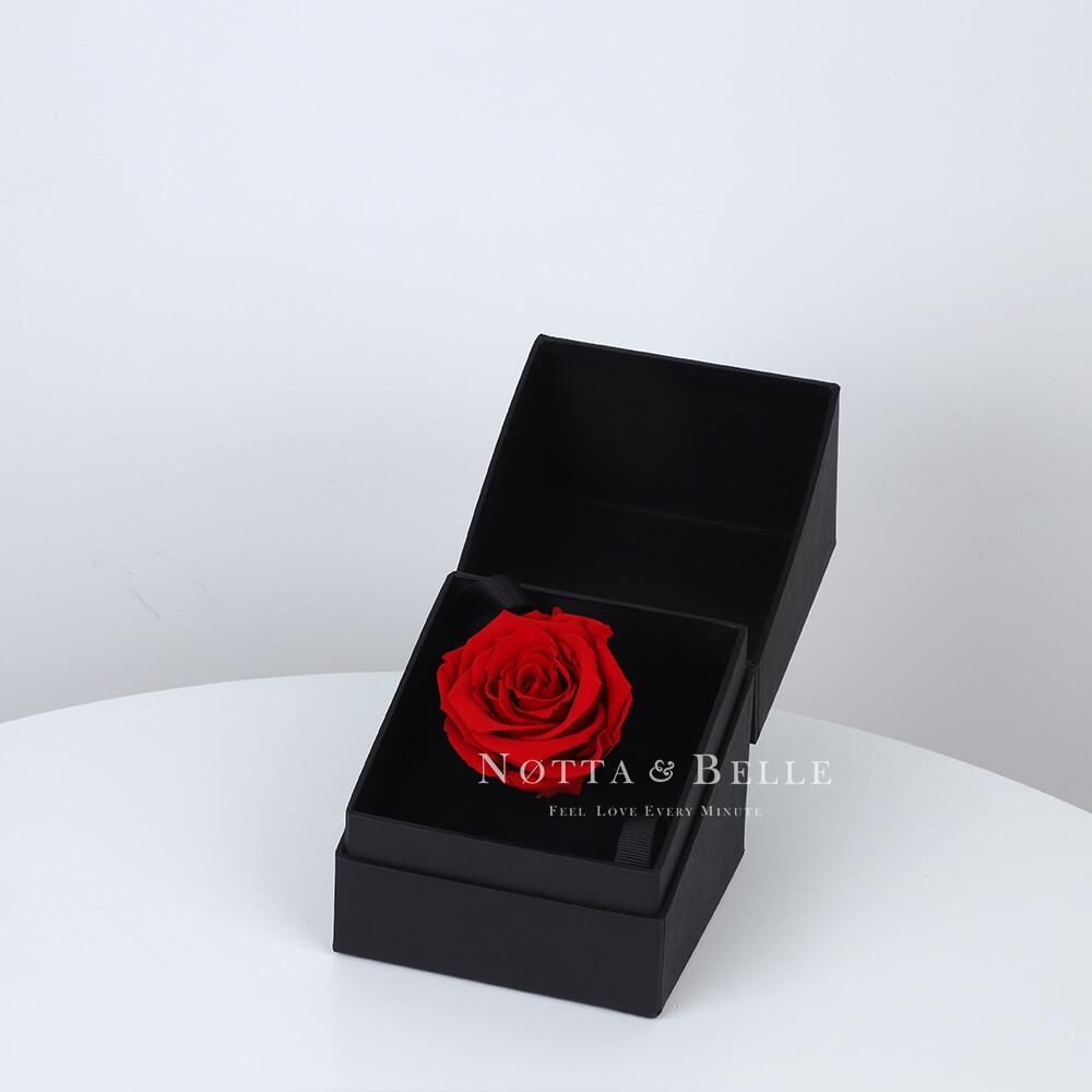 Červená růže v černé krabičce Mini