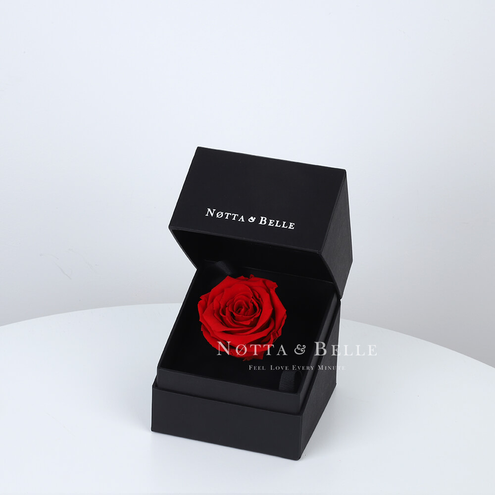 Rote Rose in schwarzer Mini-Schachtel