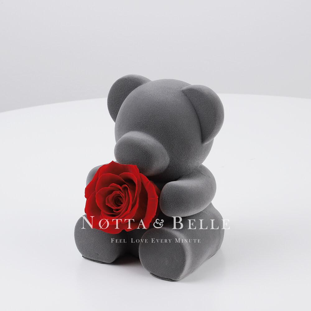 Medvídek s růží