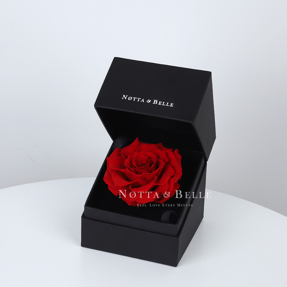 Red Rose in Black Premium Box