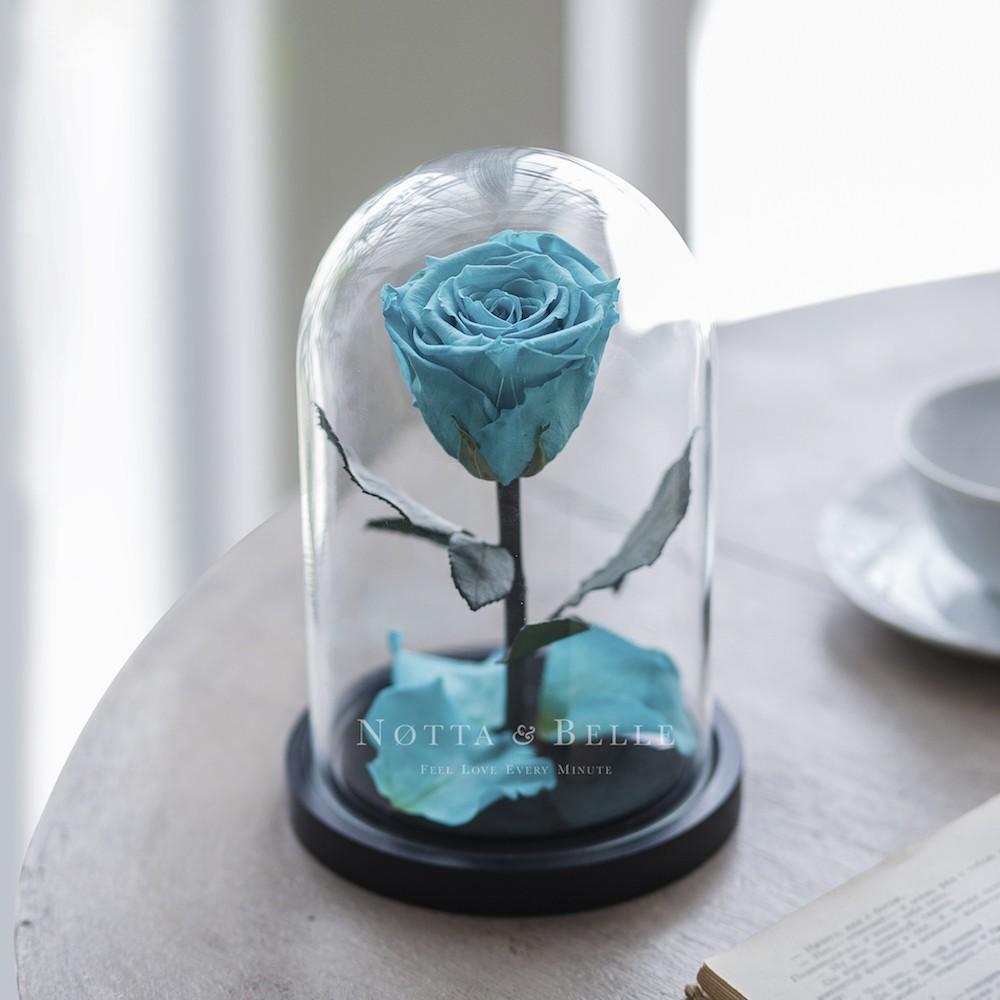 Mini tyrkysová Růže ve skle