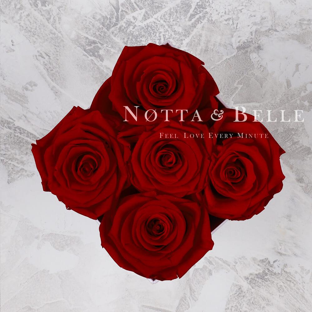 Bouquet satin lie de vin «Forever» - 5 roses