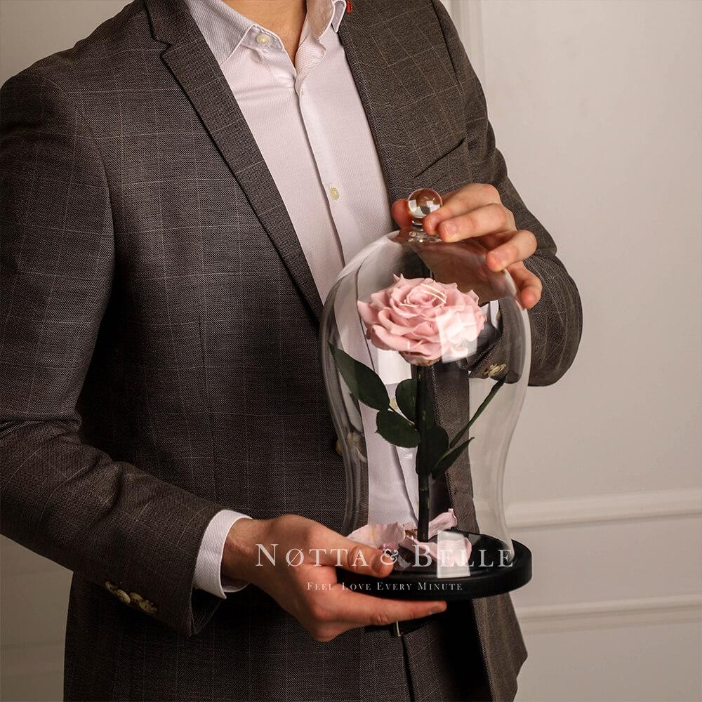 Neghno-Rozovaya roza v kolbe Premium X