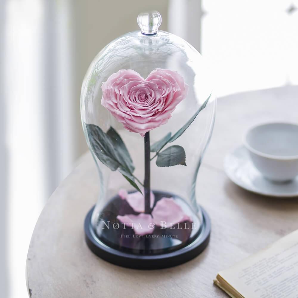 Нежно-Розовая роза Premium X в форме сердца