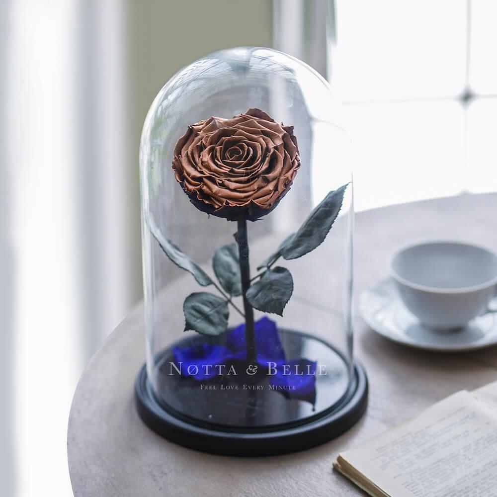 Роза в колбе медного цвета - King