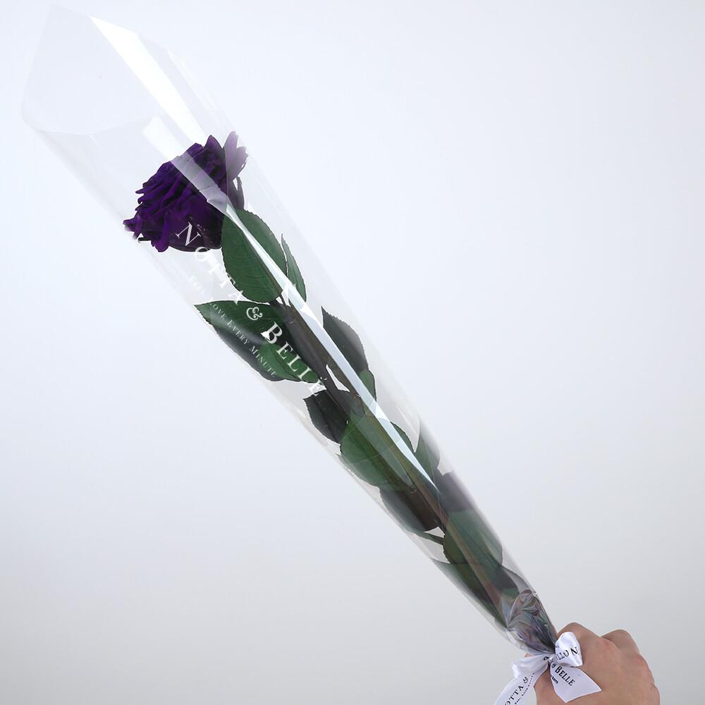 Фиолетовая роза на стебле - Premium