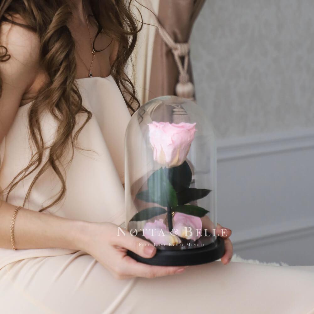 Neghno-Rozovaya roza v kolbe Mini
