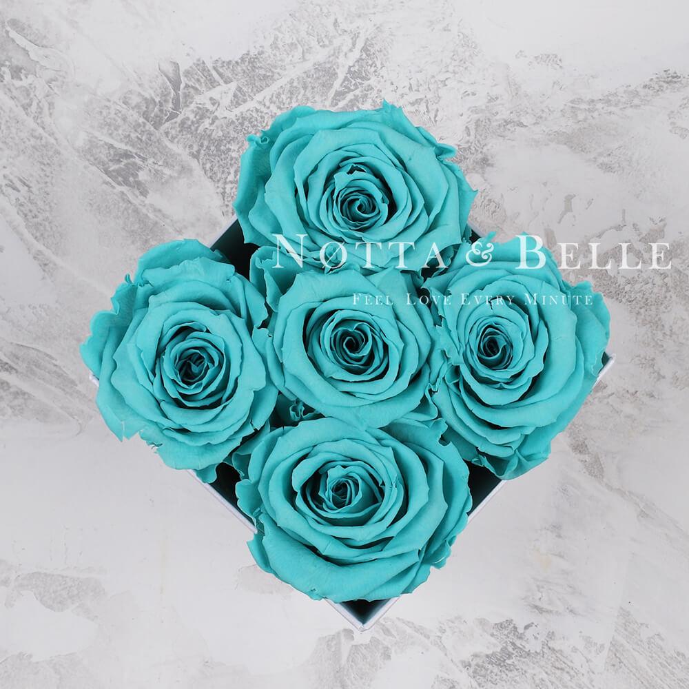 Долговечный букет из 5 бирюзовых роз - №042