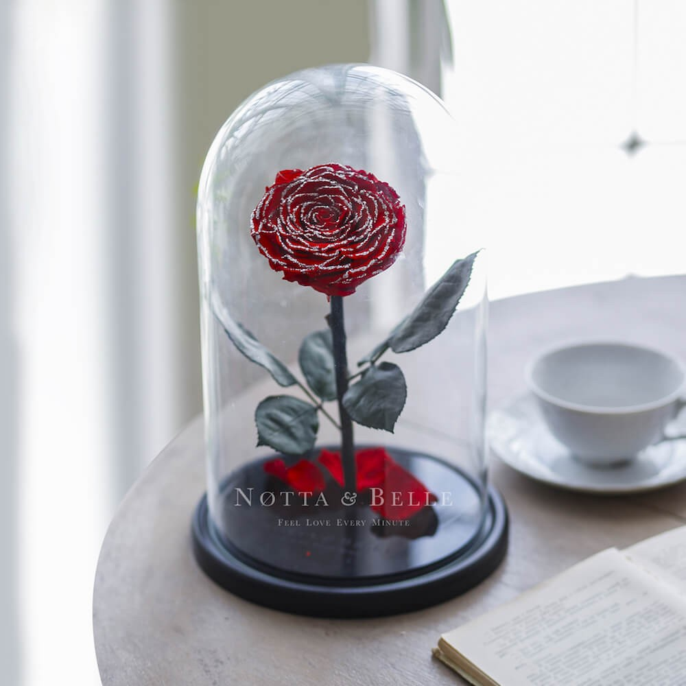 Красно-серебристая роза в колбе - King