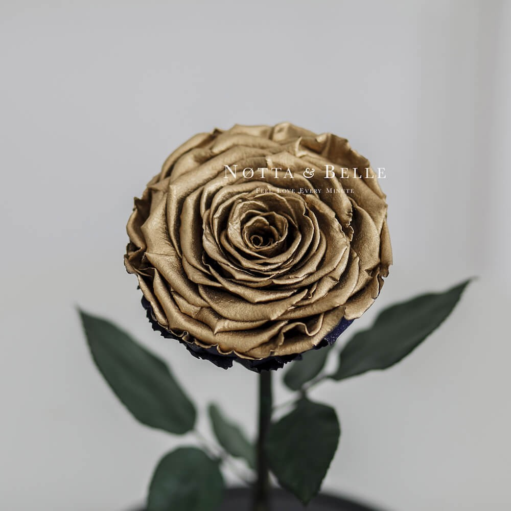 Роза в колбе бронзового цвета- King