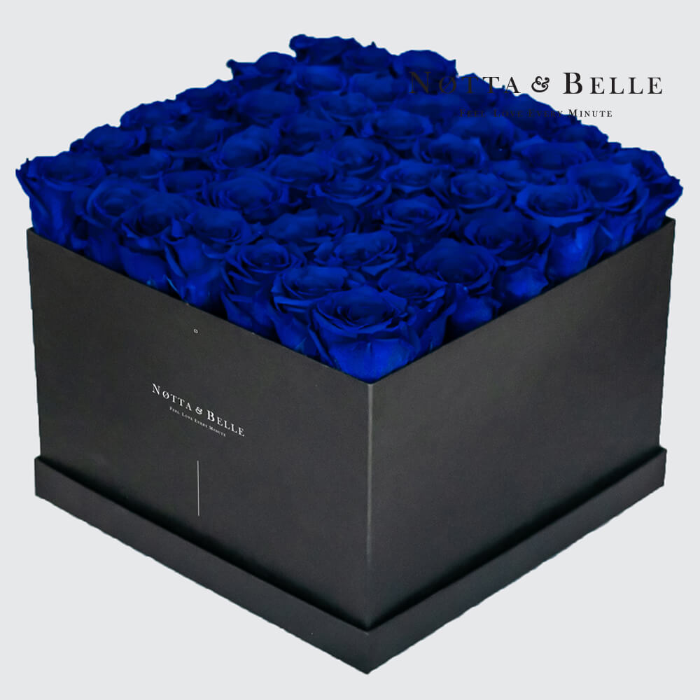 Blue roses in square black box - 49 roses