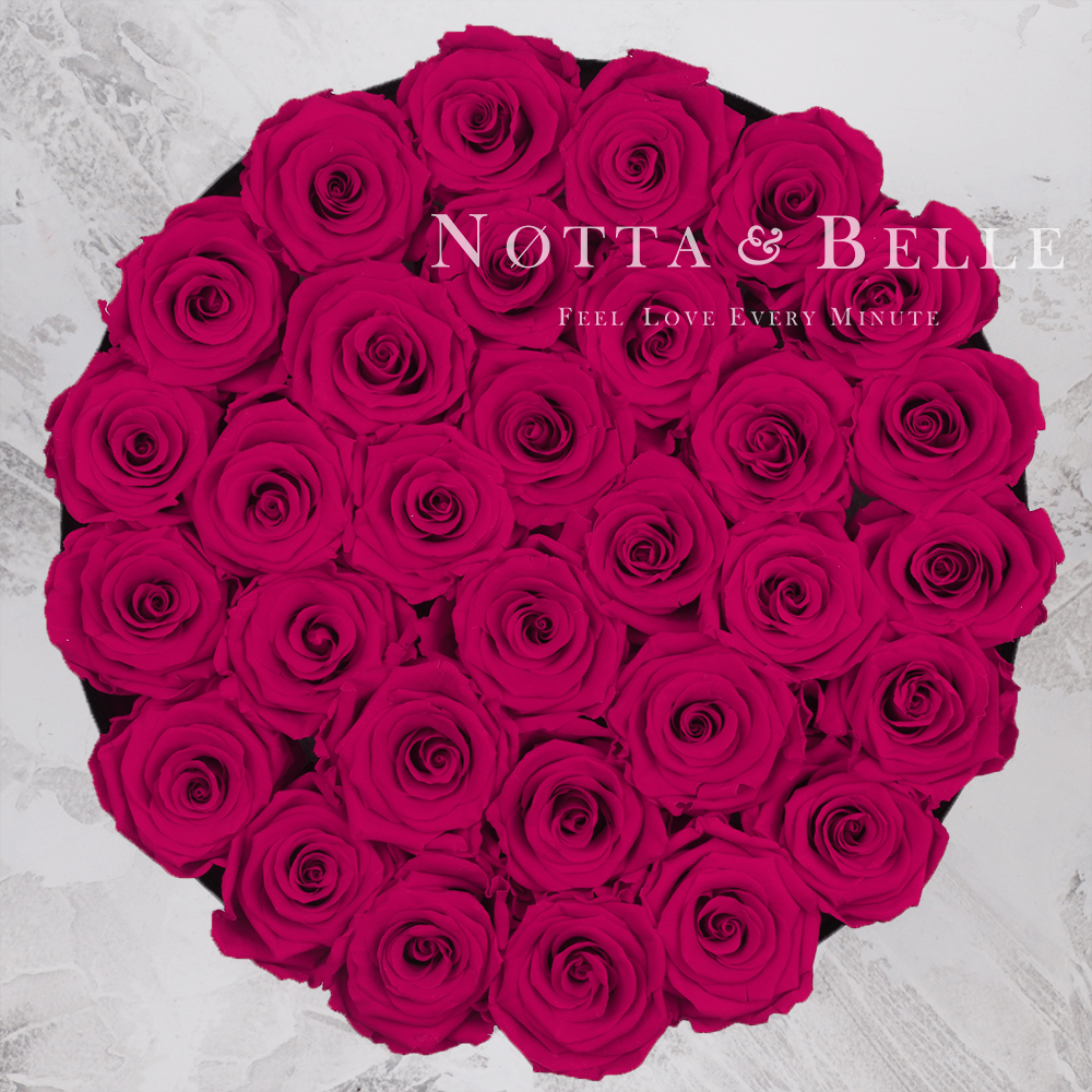 Forever Fuchsia roses in round black box - 29 roses